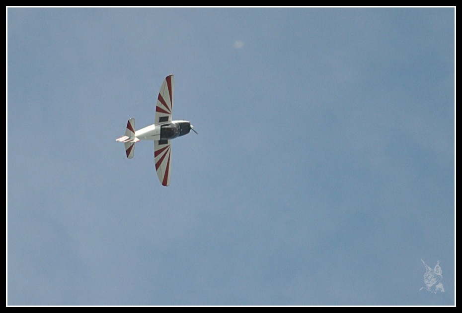 Voltige aérienne - CAP 10 de l'AVA en vol à LFBK