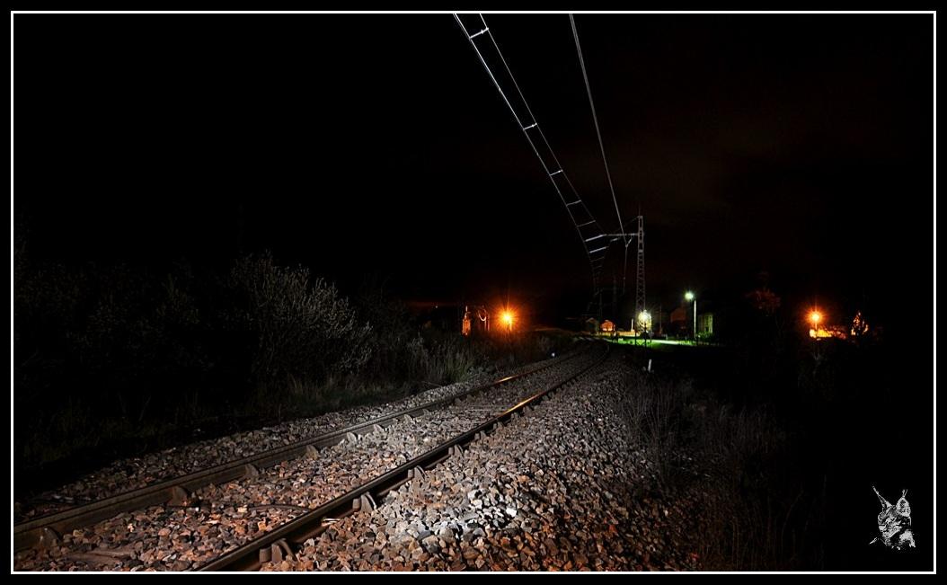Ligne des Causses - Ruynes en Margeride
