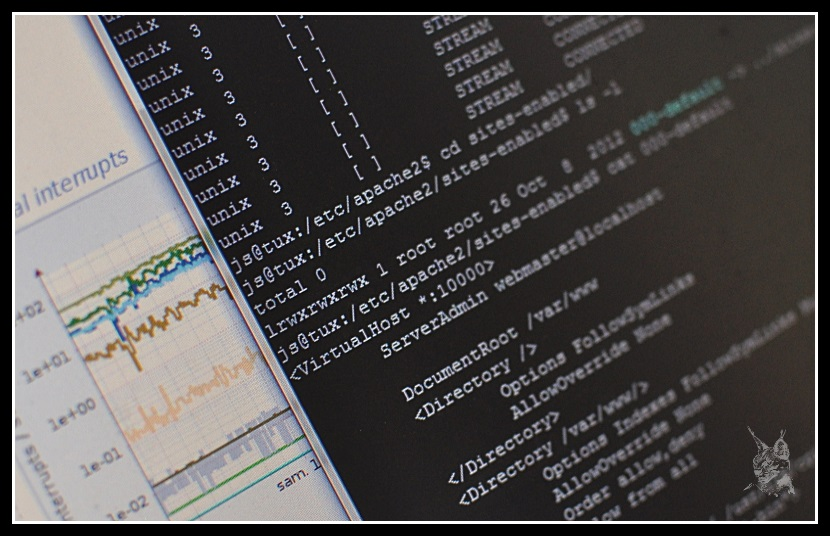 Console virtuelle d'administration Unix (Linux)